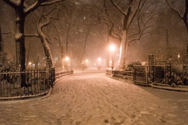 Snow in New York only looks this pretty on Instagram.
