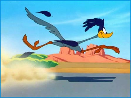 We're doing this Road Runner style! Beep beep!